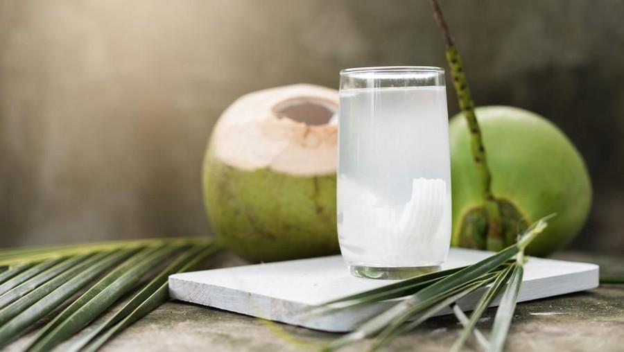 air kelapa untuk ibu hamil trimester pertama