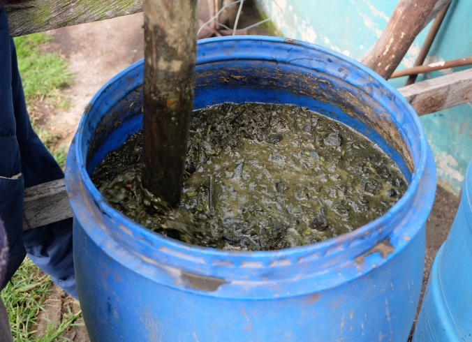 Cara Membuat Kompos Cair Upaya Melindungi Kesehatan Linkungan