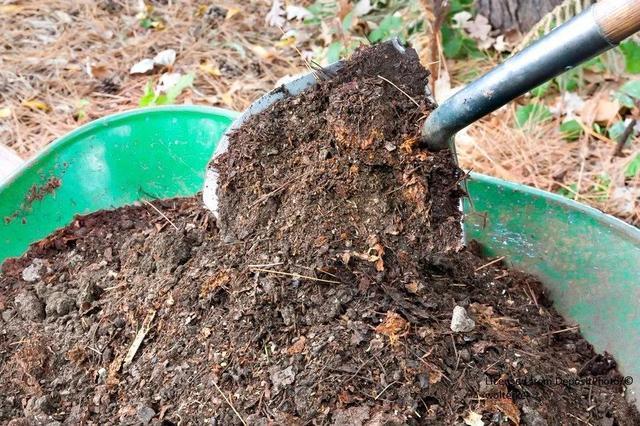 mengolah sampah organik menjadi kompos