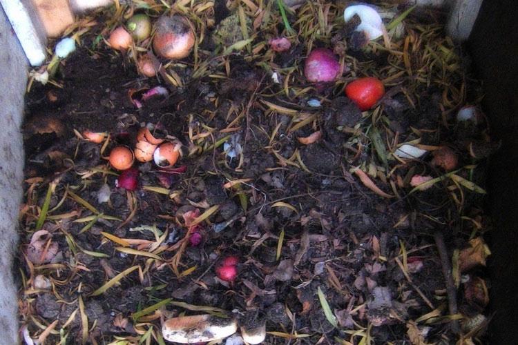 pembuatan kompos organik sederhana